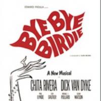 《再见,伯蒂》(Bye Bye Birdie)